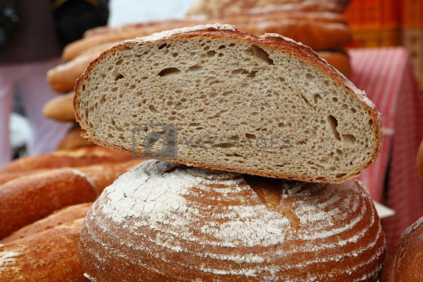 Close up selection of assorted fresh bread loaves on retail display of bakery store, low angle view