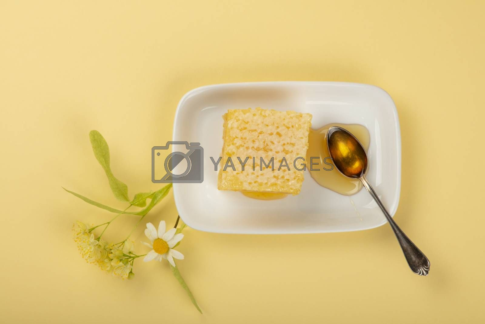 Close up fresh acacia honey with honeycomb, spoon, linden and chamomile flowers on white plate over yellow beige background, elevated top view, directly above