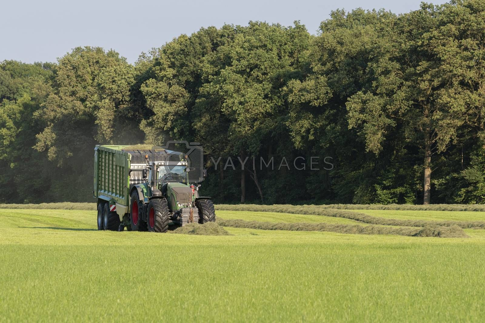 Green tractor picking up cut grass with a green loader wagon in the summer in the Netherlands