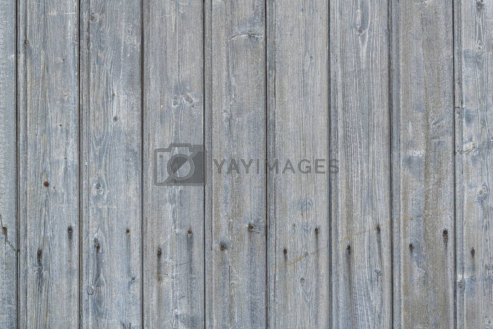 Background photo of weathered old gray wooden scrap with rusted nails shown full screen