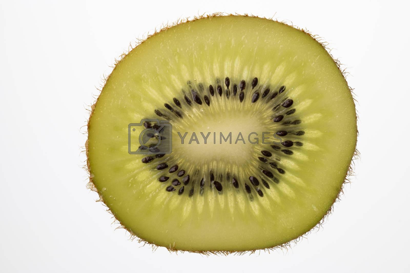 Slice of Kiwi fruit cut in backlight foto shot