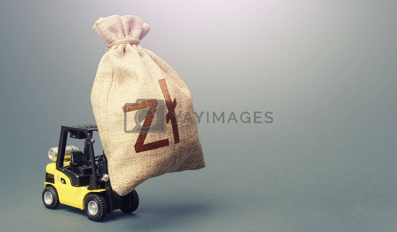 Forklift carrying a polish zloty money bag. Anti-crisis budget. Borrowing on capital market. Stimulating economy. Subsidies soft loans. Investments. Strongest financial assistance, business support.