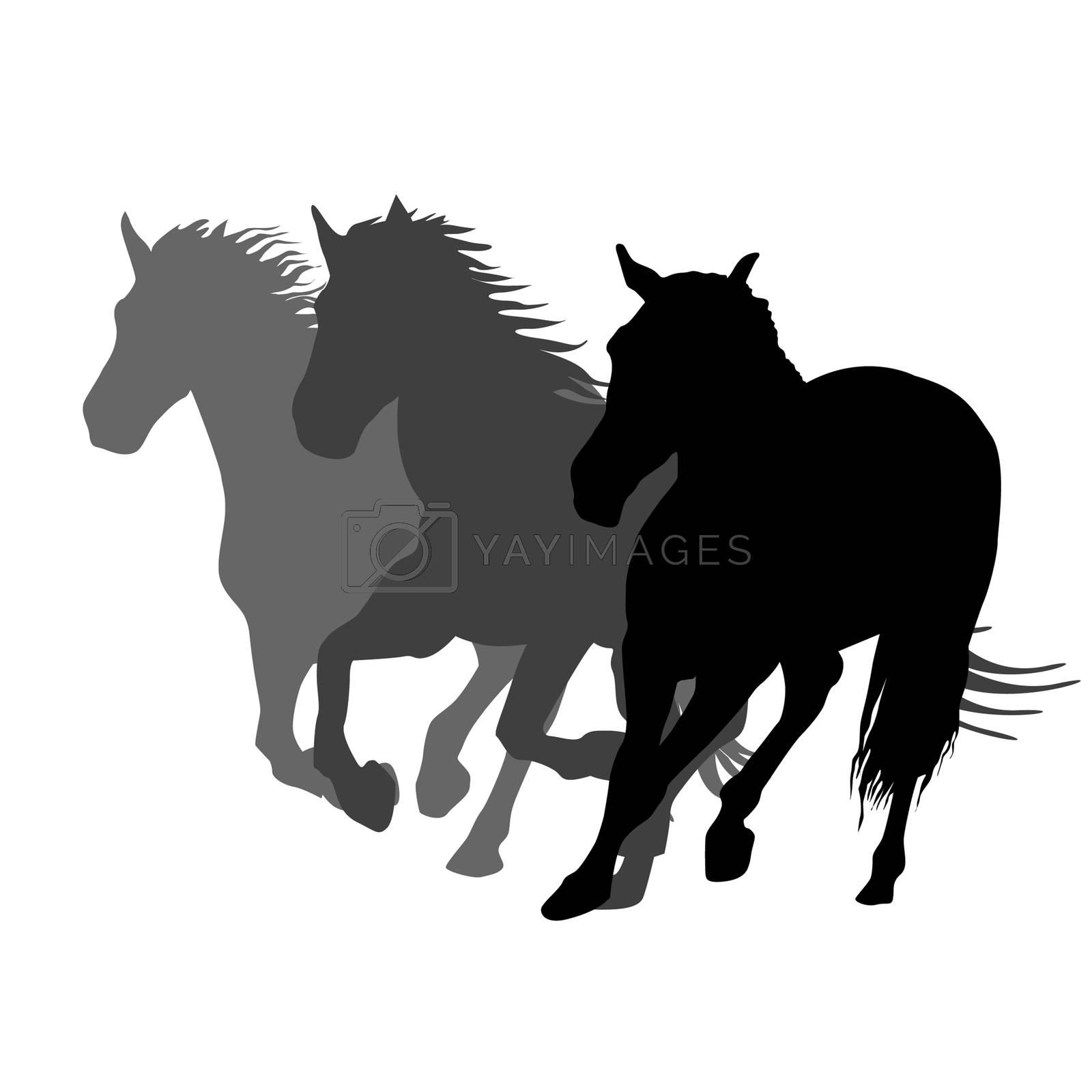 Silhouettes of three horses running