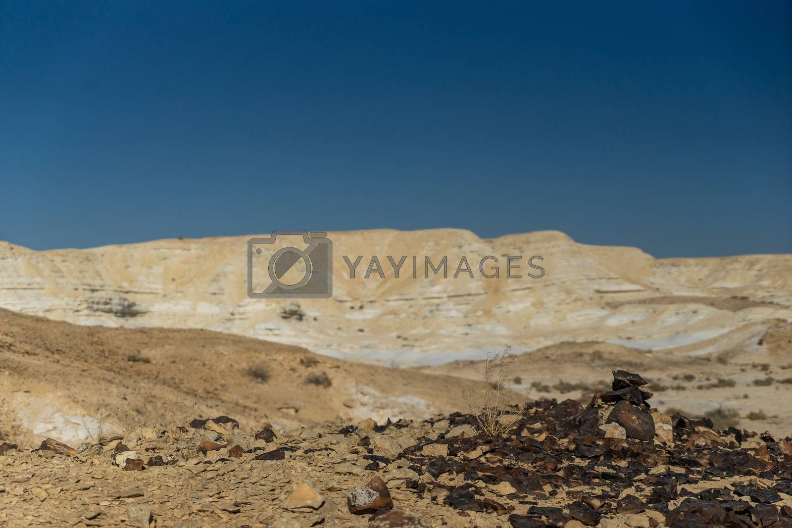 Stone desert in Israel travel attraction by javax