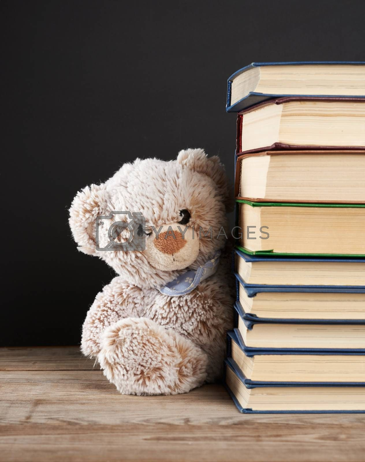 teddy bear peeking out from behind a stack of books, black background, back to school