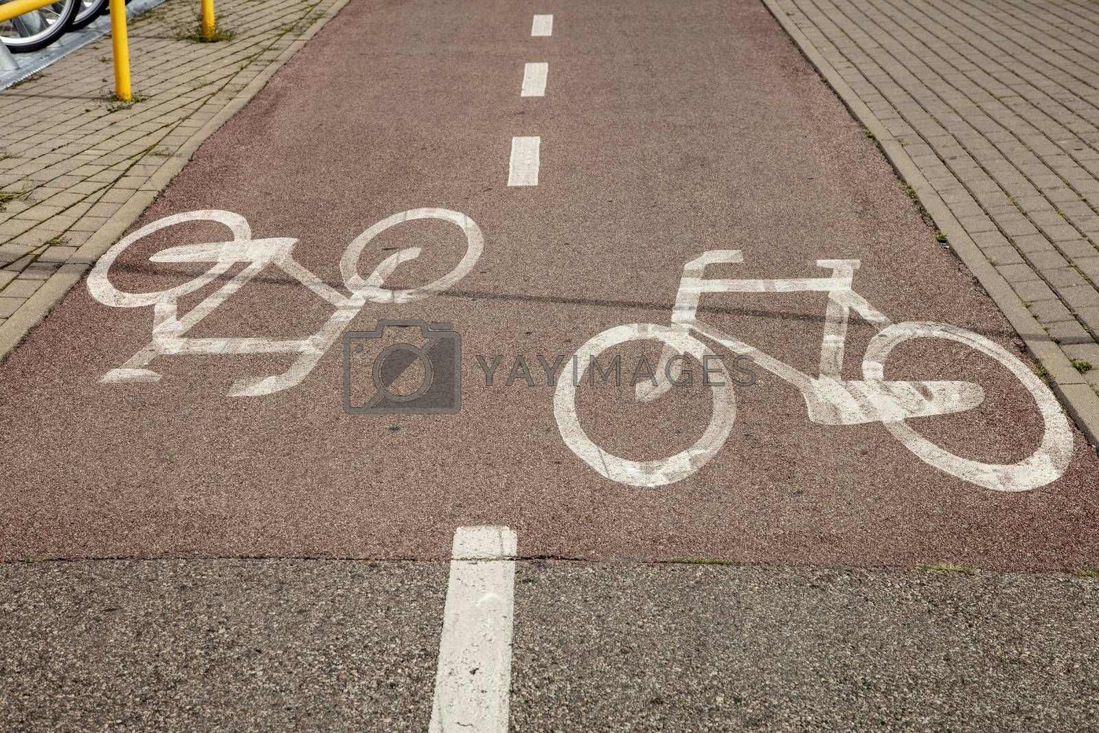 bicycle path with directions
