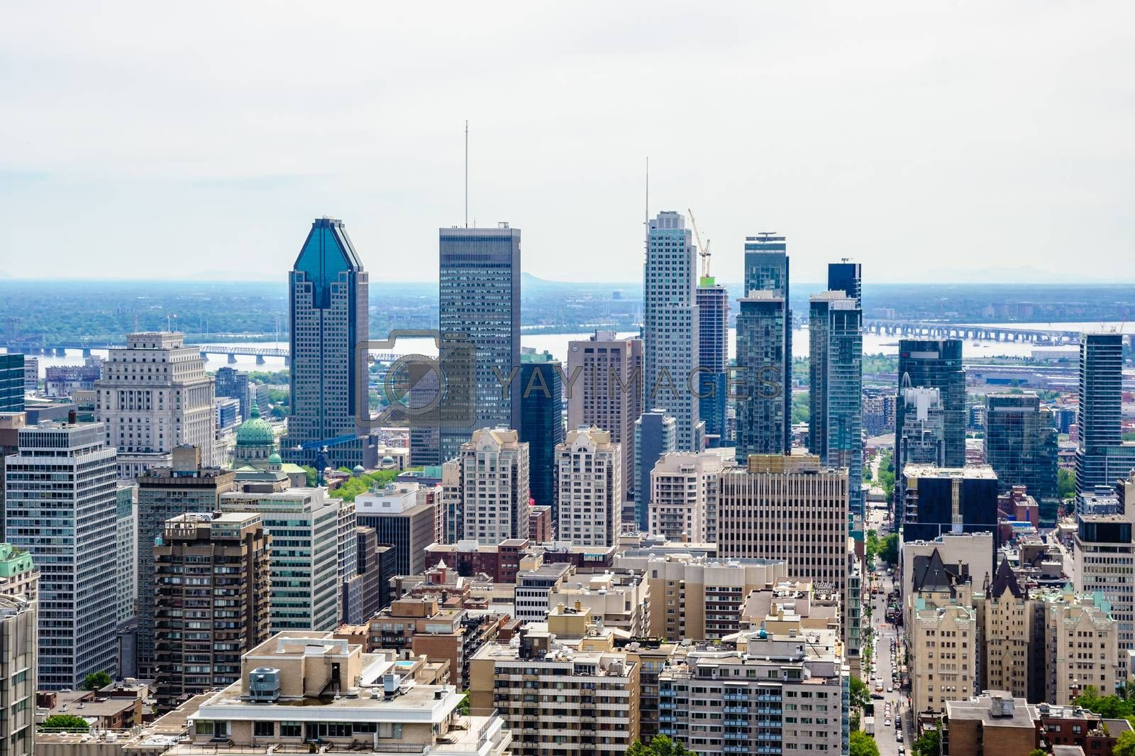 MONTREAL, CANADA - JUNE 16, 2018: The dense downtown and surrounding areas can be seen looking east from Mount Royal.