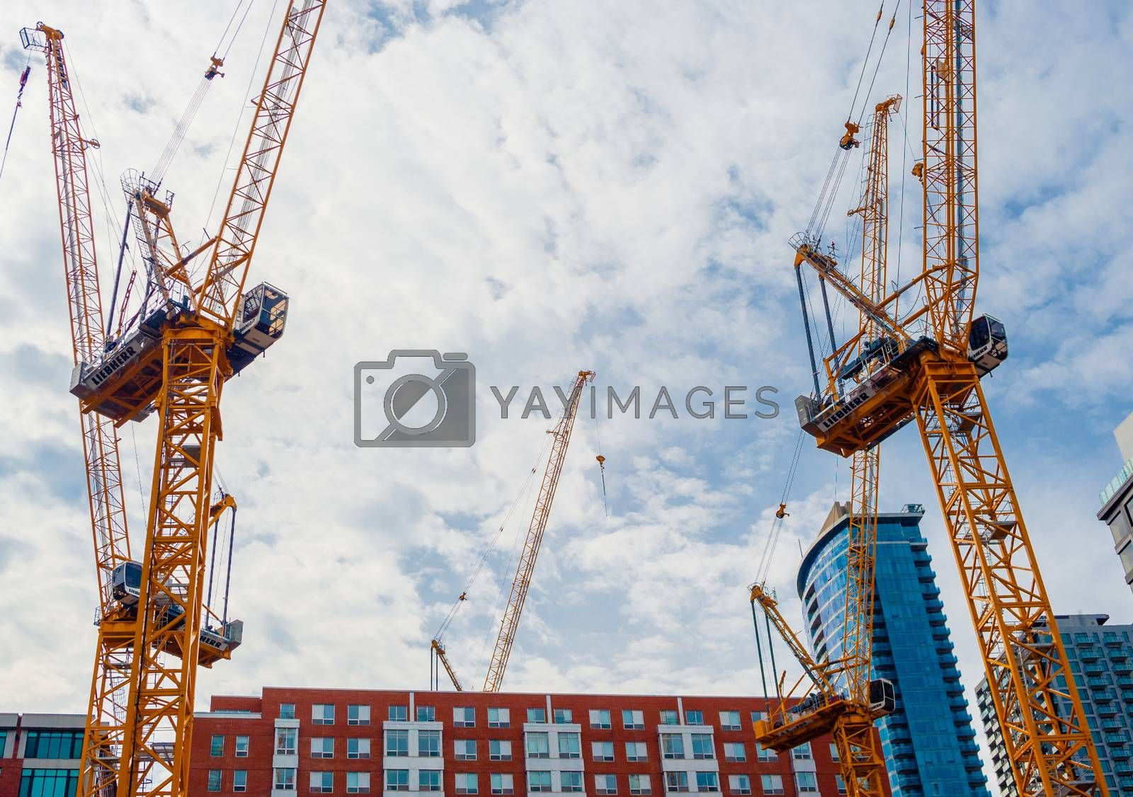 MONTREAL, CANADA - JUNE 17, 2018: Multiple cranes are set up downtown for a large construction project.