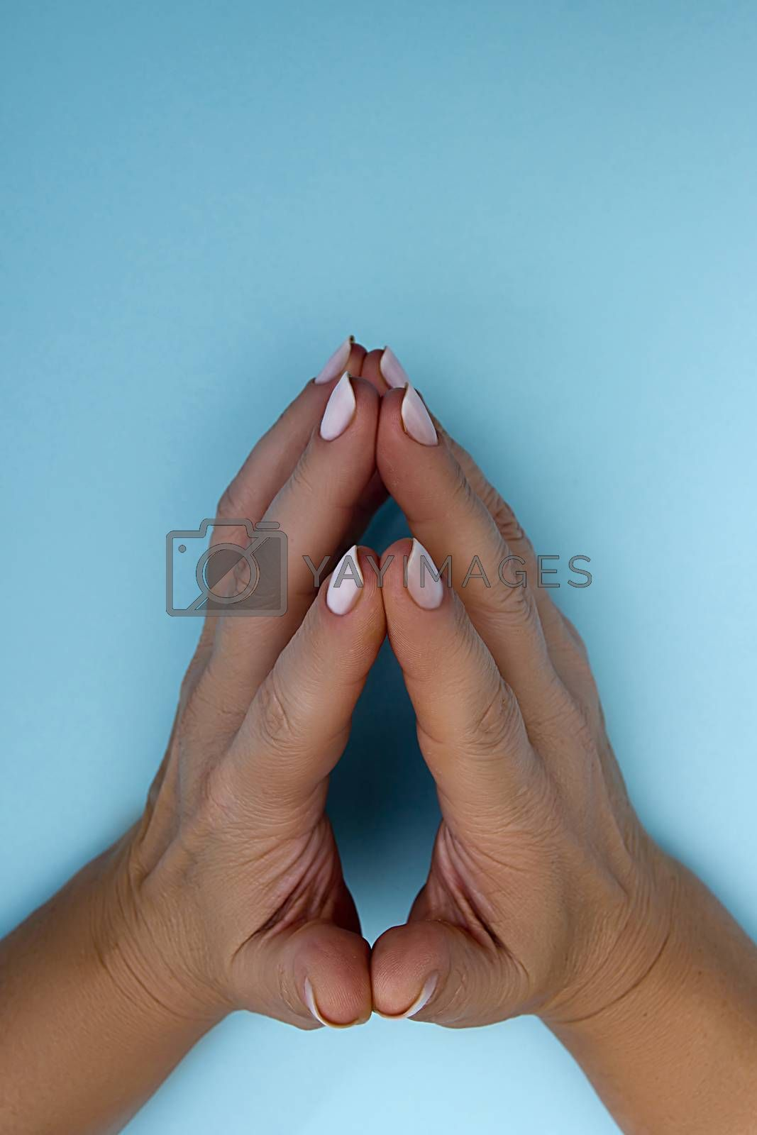 Folded female hands on a blue background