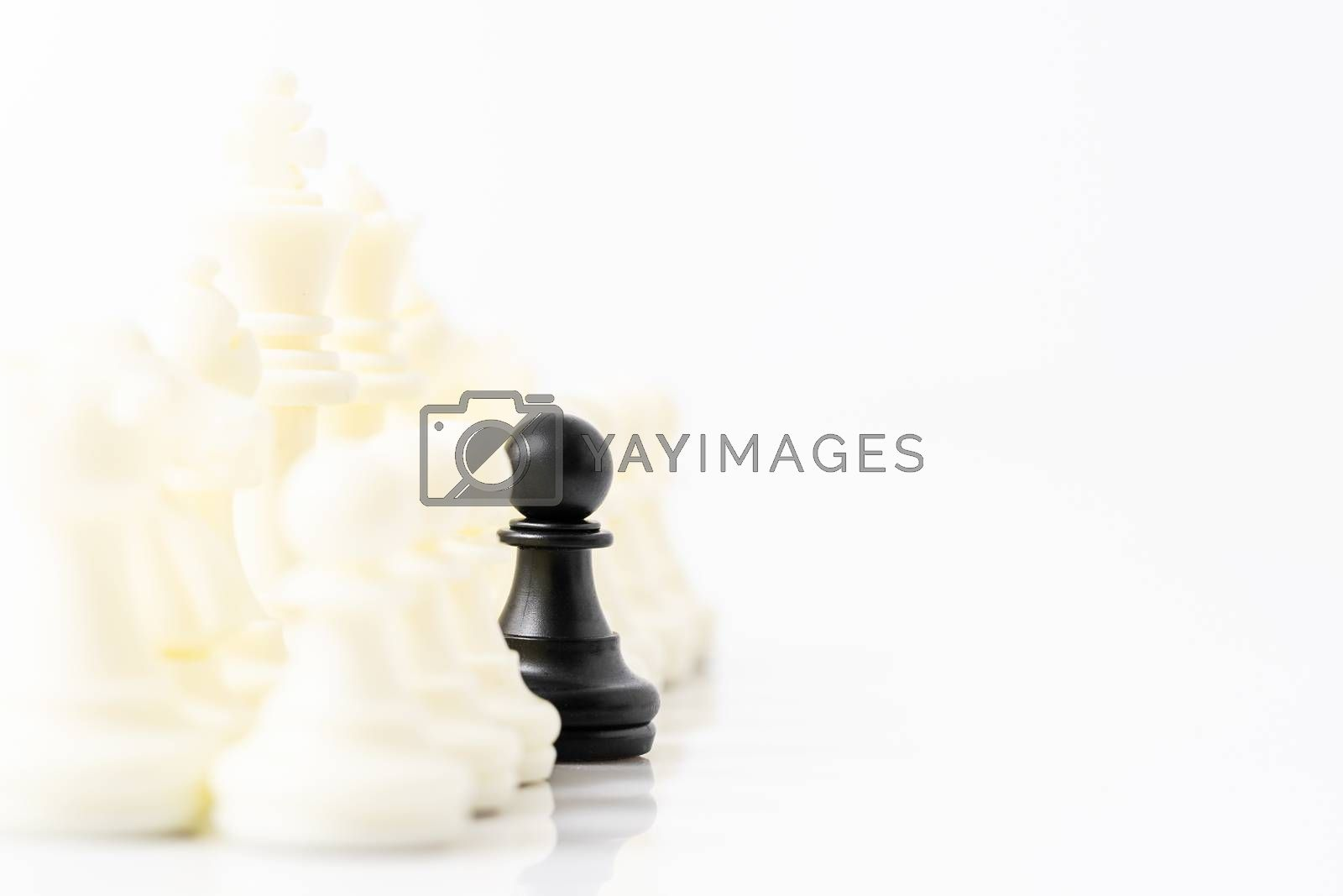 Close up Set of black and white chess pieces on chessboard, Set of chess figures on white background