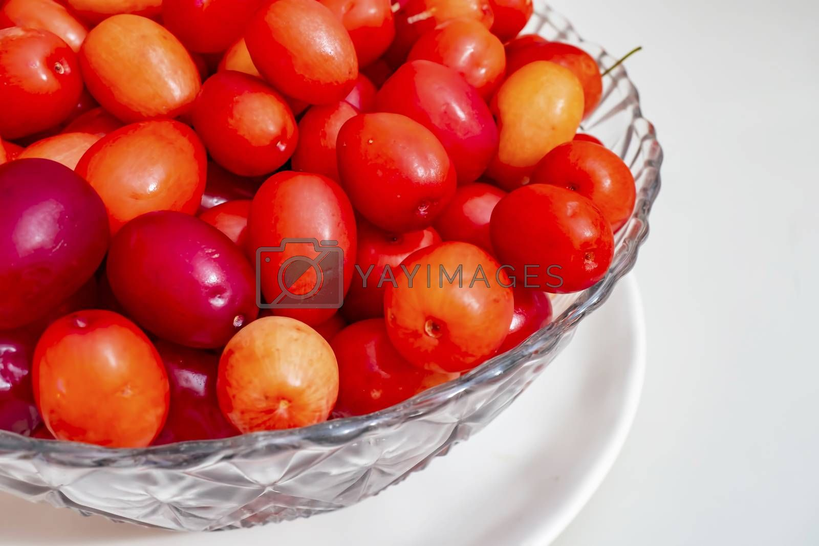 cranberry fruits in decorative plate