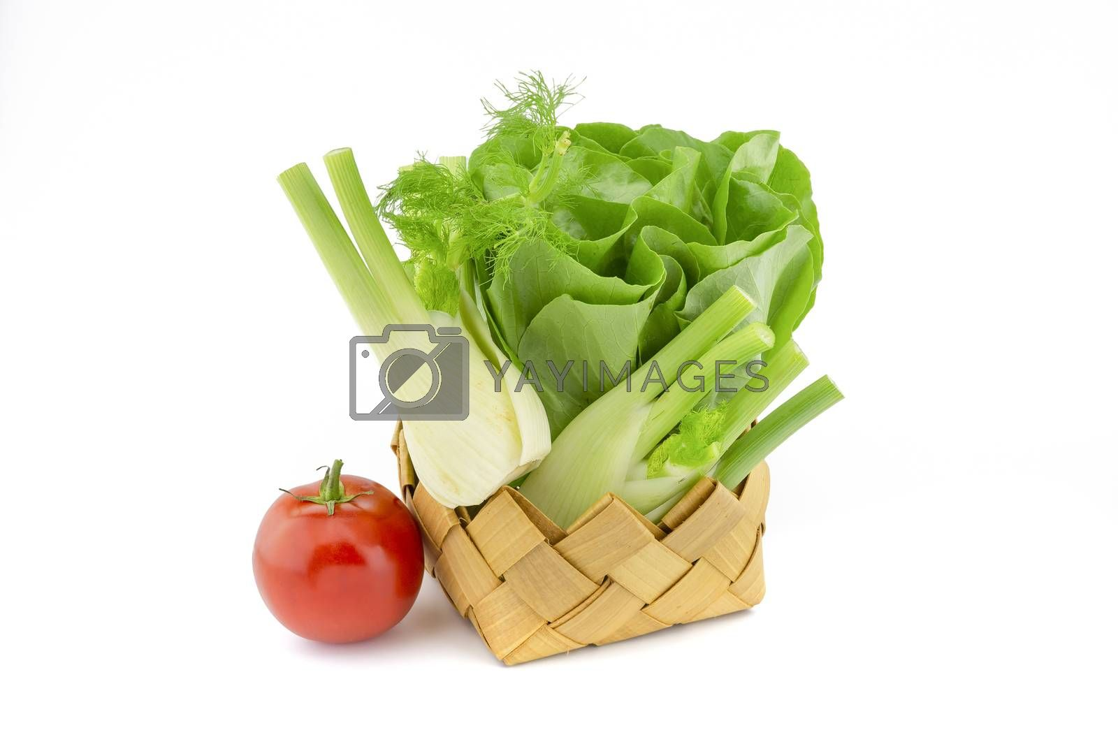 Fresh butter lettuce also known as Boston or Bibb lettuce in rustic woven basket, fennel and tomato over white background