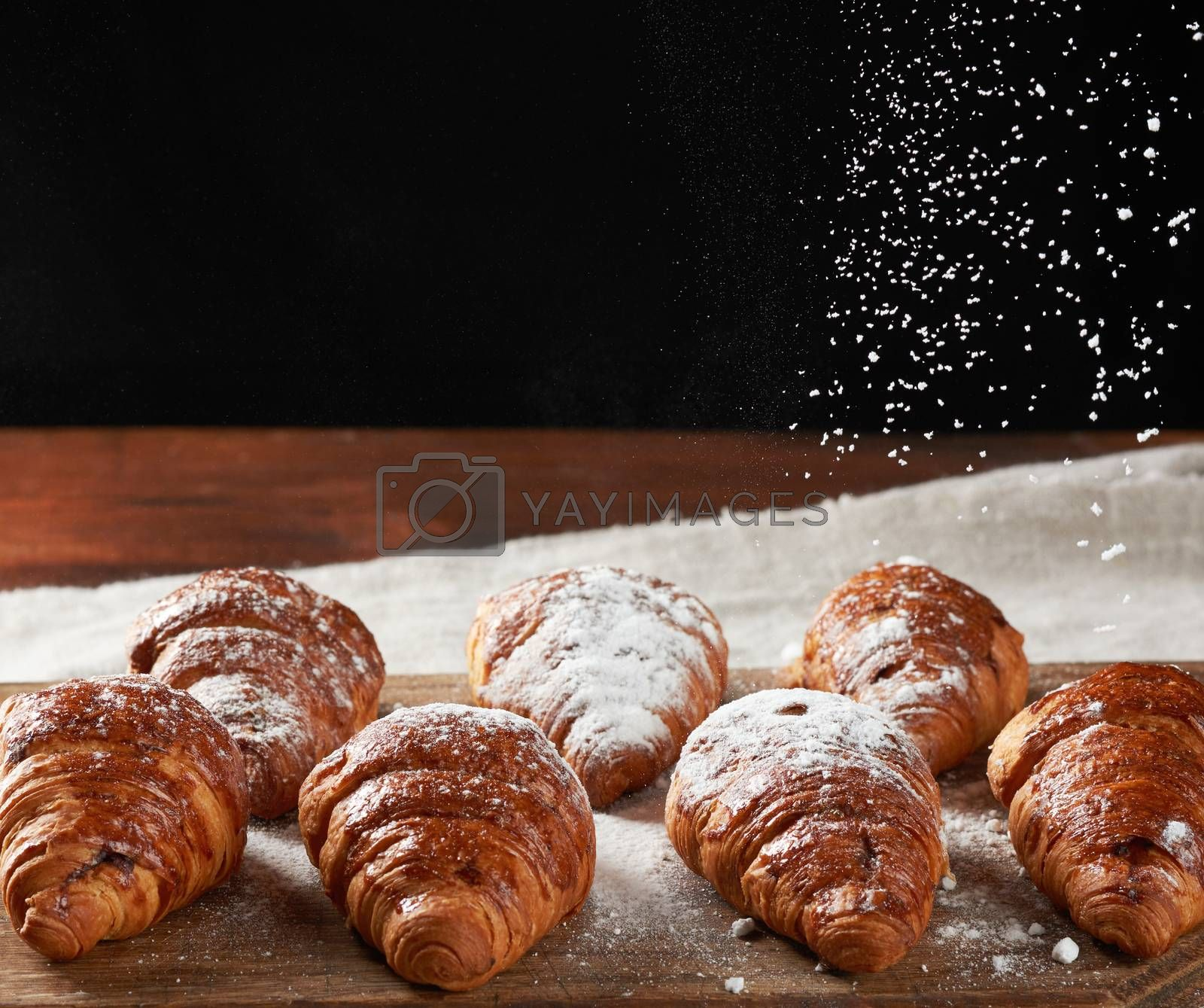 baked croissants sprinkled with powdered sugar on a wooden board, sugar flies from above