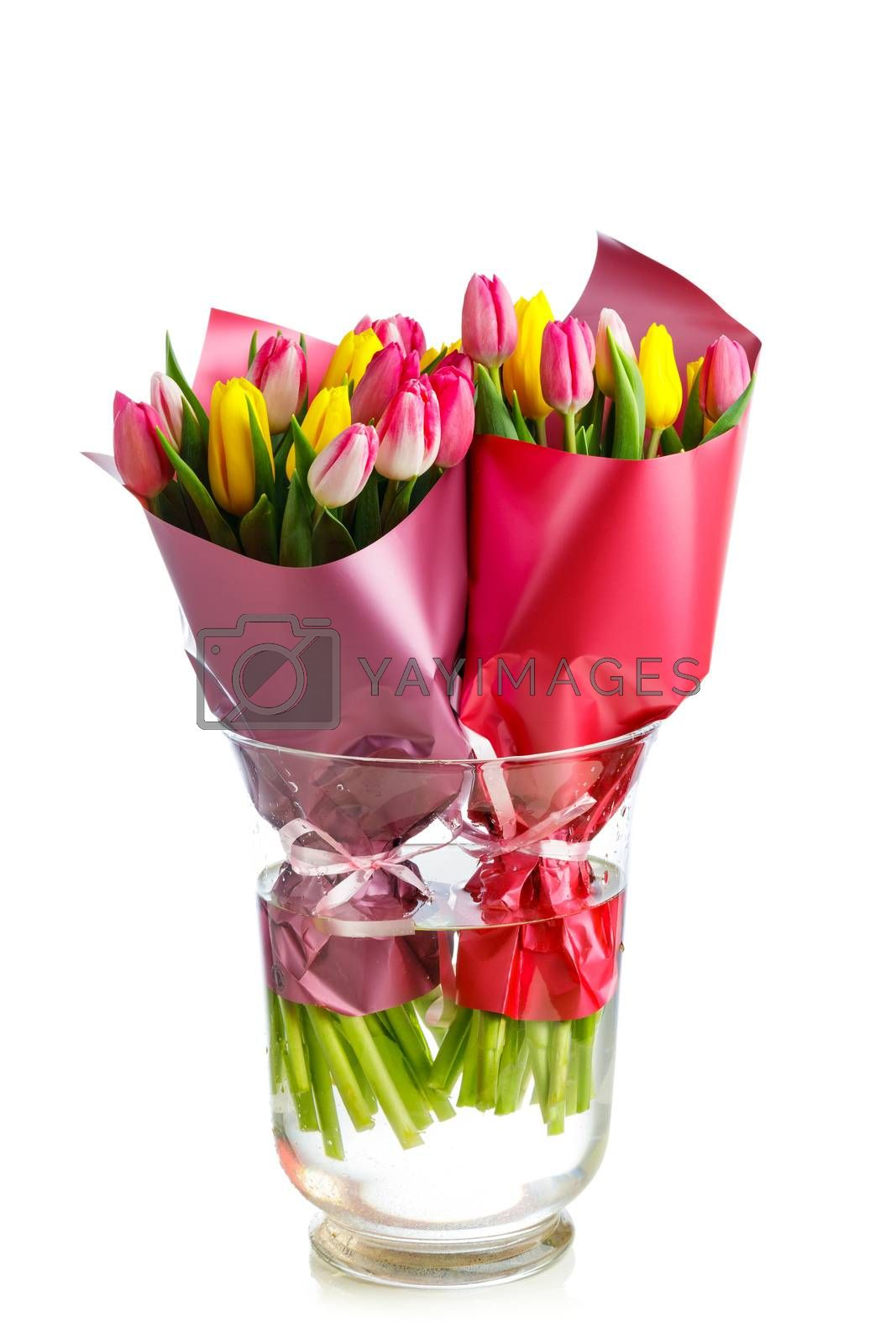 two bouquets of tulip flowers in a glass vase, isolated on white