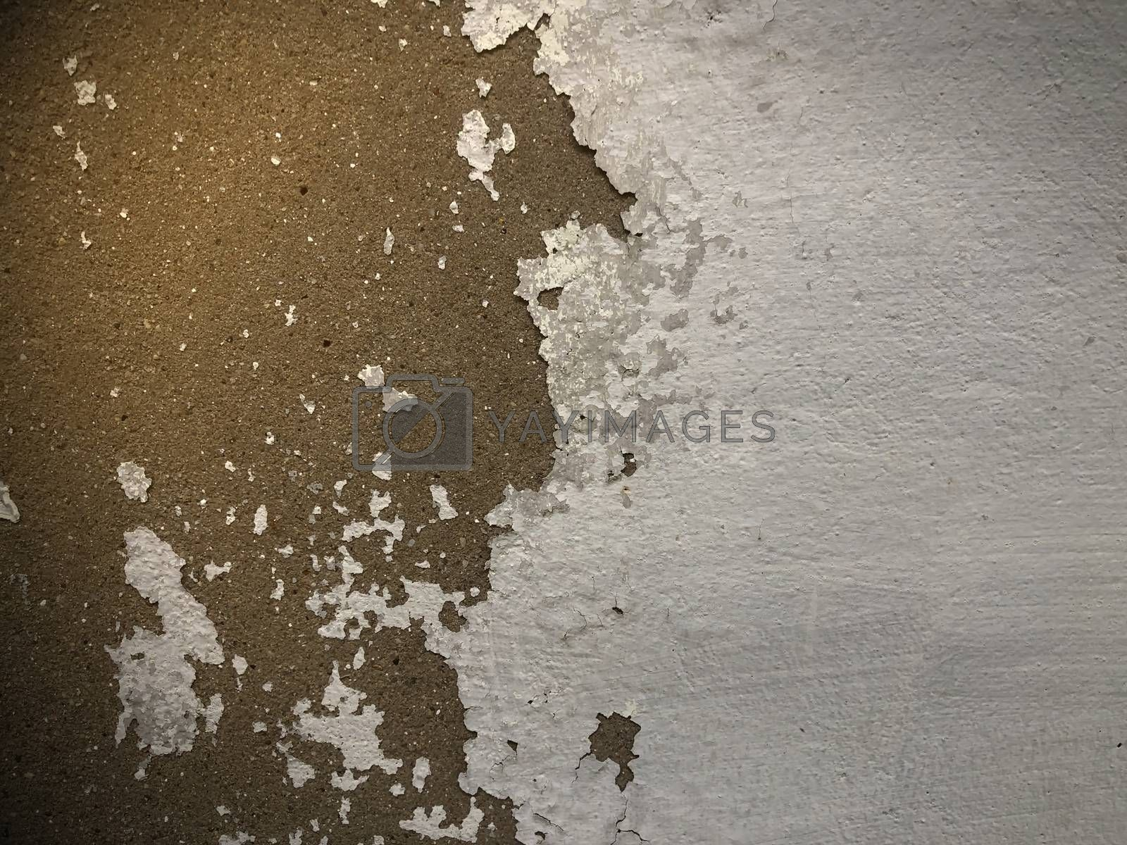 Abstract cement wall texture affected by environmental changes.
