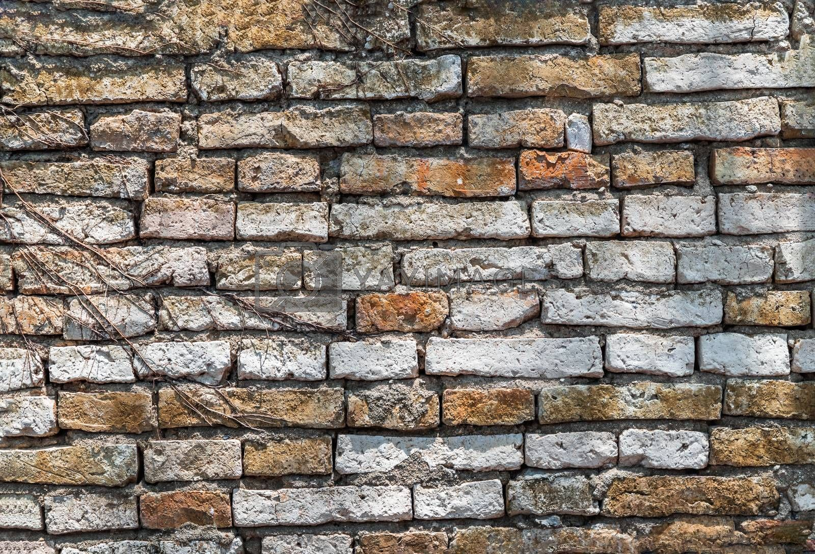 Empty Old Brick Wall Texture. Background of the old red brick walls. Rustic style, Copy Space.