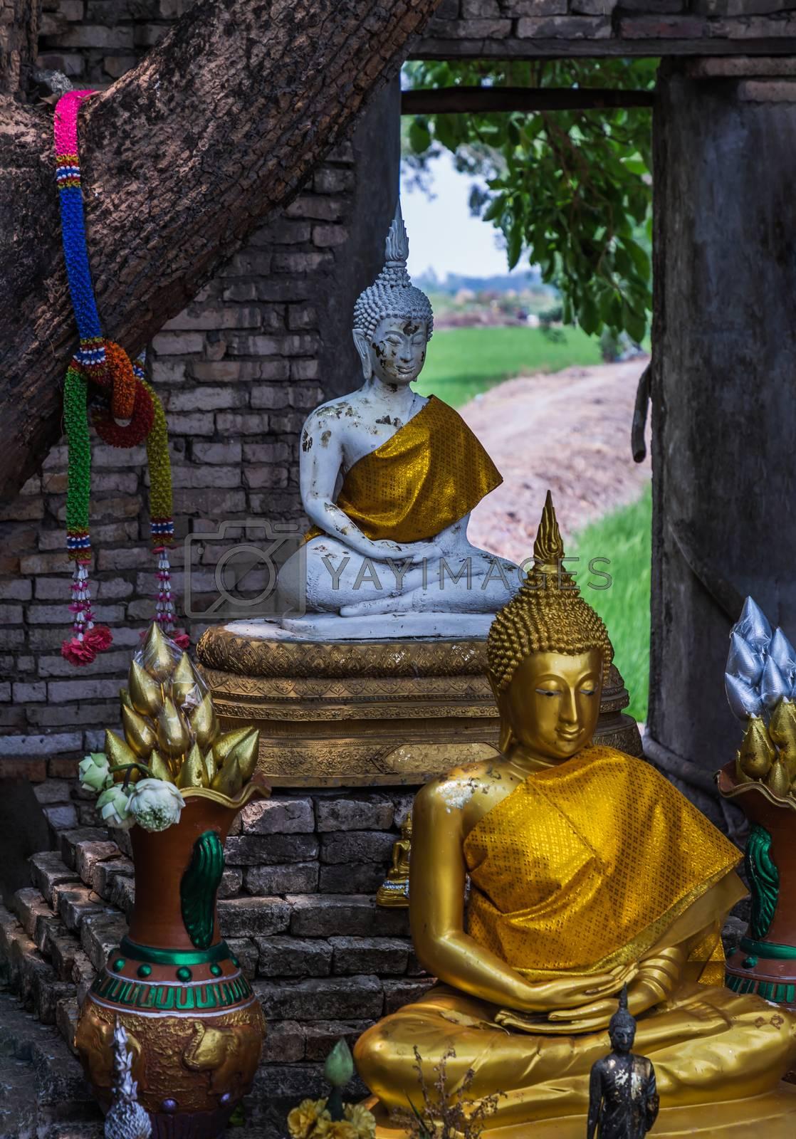 Nakhon Nayok, Thailand - Mar 21, 2020 : Buddha statue at The ancient of a 200 year old church. Wat Pah Krathum. Selective focus.