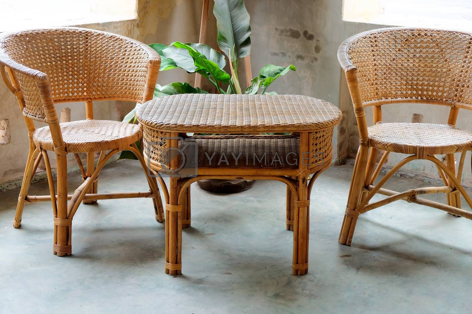 Image of Interior decorative for living area with rattan armchair and plants