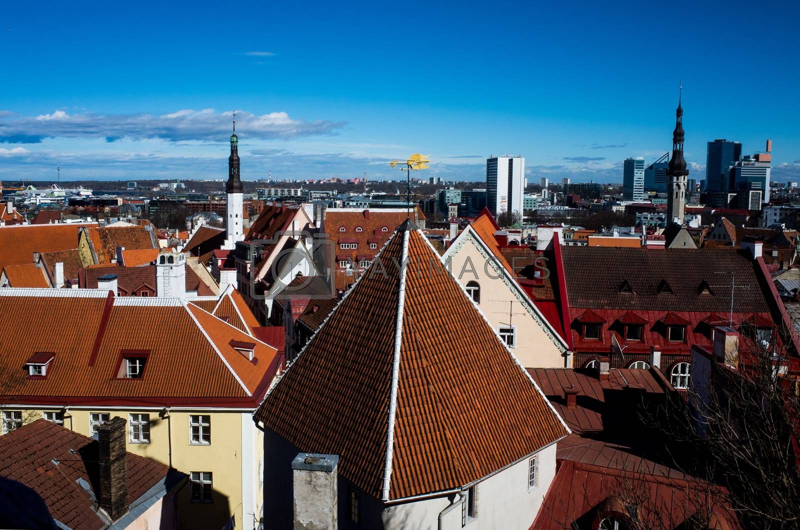 Landmarks of the Estonian capital by fifg