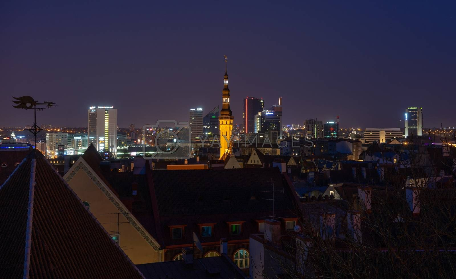 21 April 2018 Tallinn, Estonia. View of the Old town from the observation deck at night