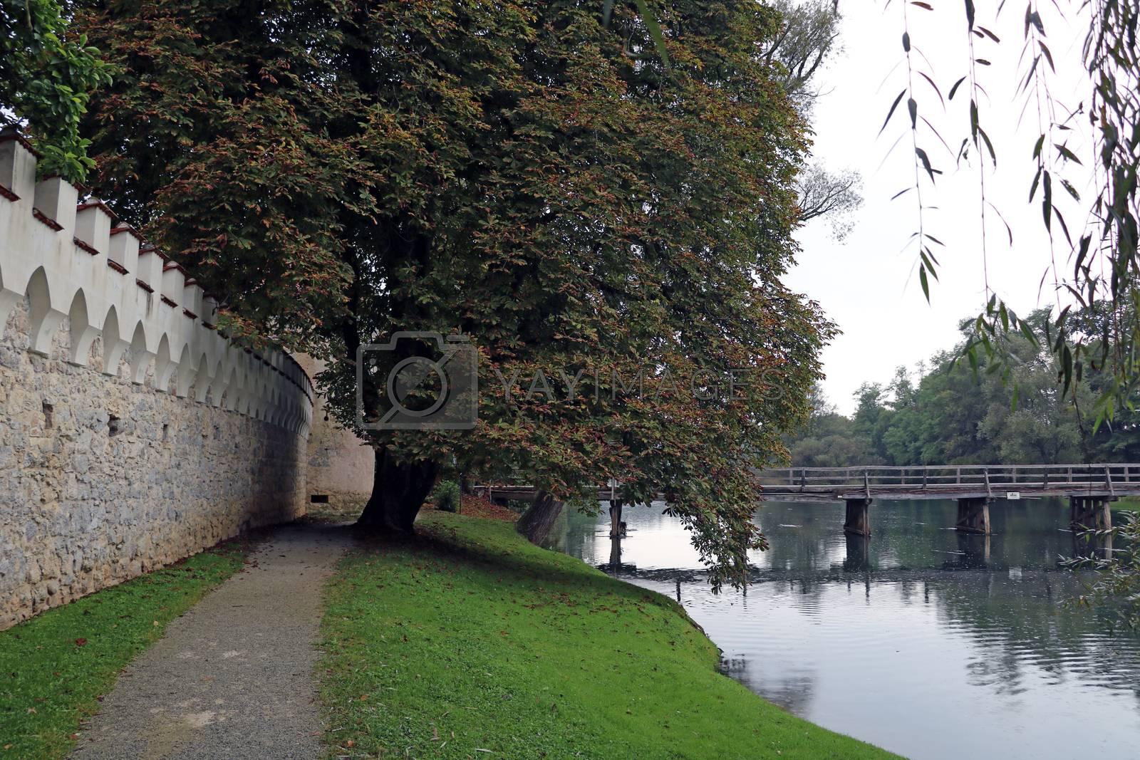 Walking path along the river or lake