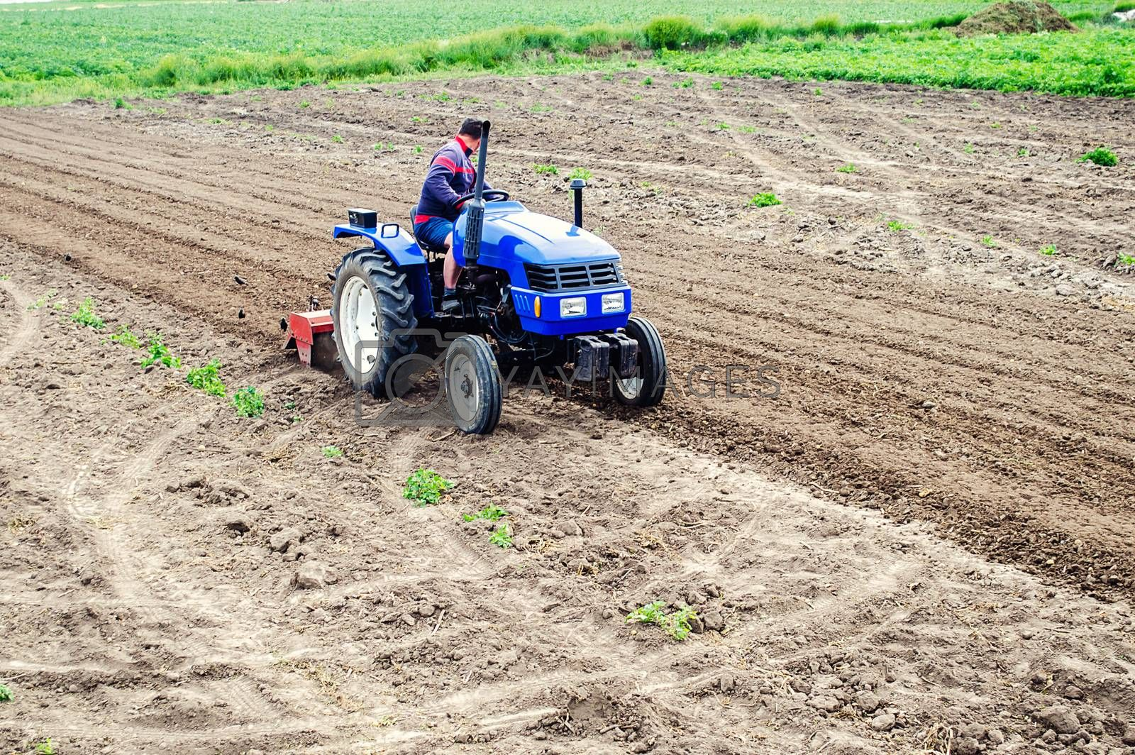 Farmer on a tractor loosens soil with milling machine. First stage of preparing soil for planting. Loosening surface, land cultivation. Use agricultural machinery. Farming, agriculture. Plowing field.