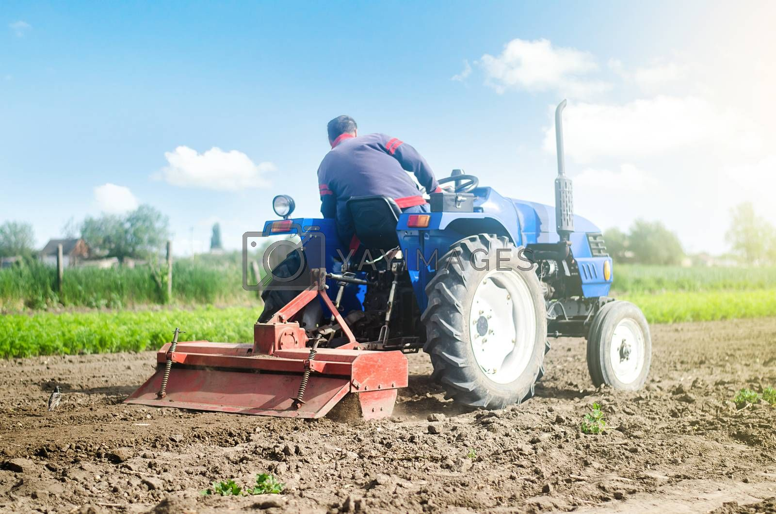 Farmer on a tractor with a milling machine processes loosens soil in the farm field. Preparation for new crop planting. Loosening surface, cultivating the land. Grind and mix soil on plantation.