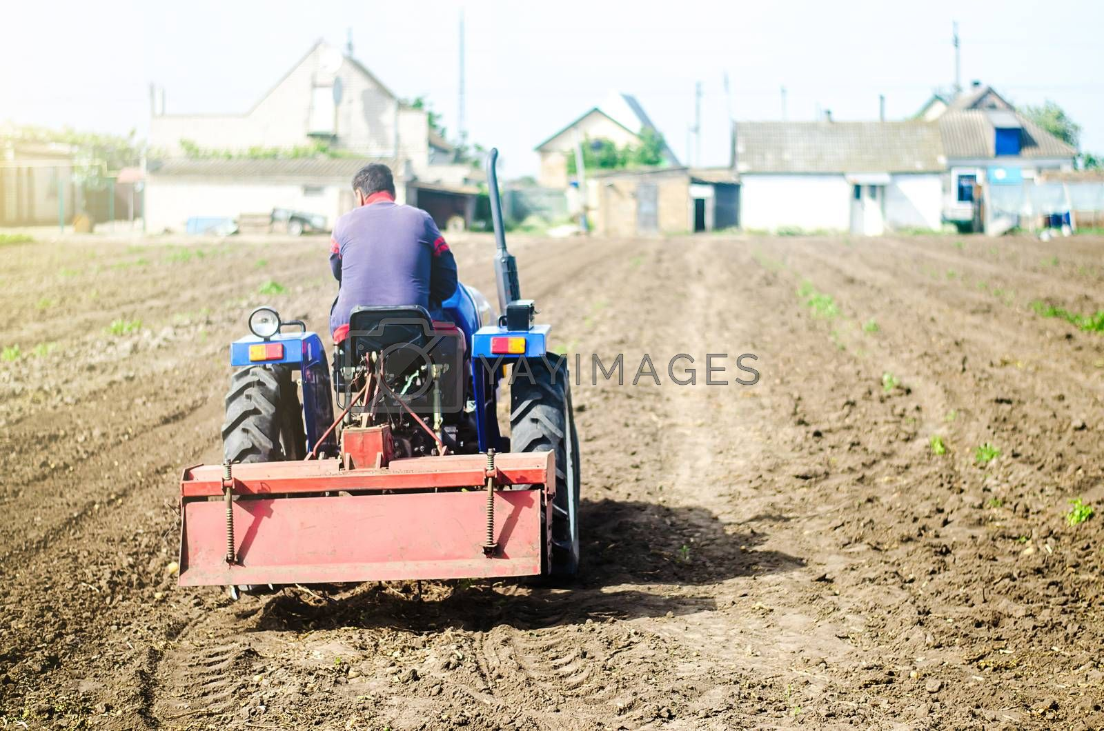 The farmer drives a tractor with a milling unit equipment. Loosening surface, land cultivation Use of agricultural machinery and to simplify and speed up work. Farming, agriculture. Plowing the field.