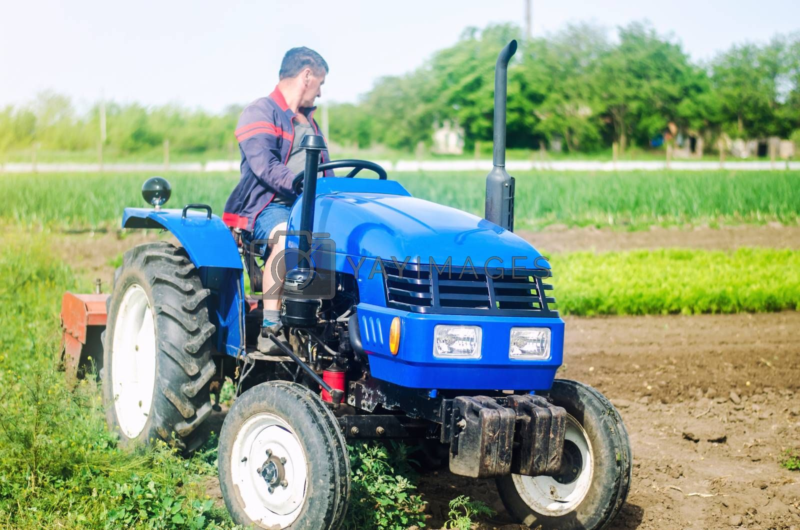 A farmer drives a tractor while working on a farm field. Loosening surface, cultivating the land. Farming, agriculture. Use of agricultural machinery and equipment to simplify and speed up work.