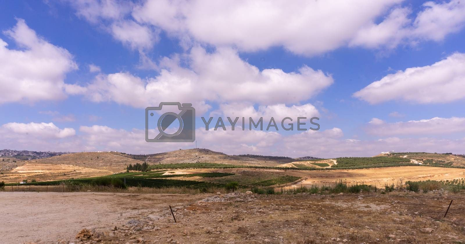 Samaria Shiloh panoramic view in summer tourism by javax