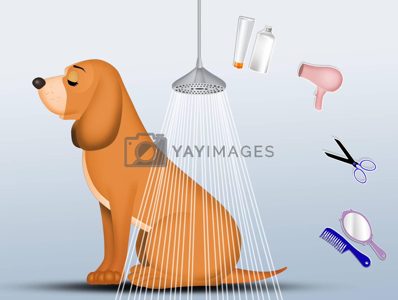 illustration of treat the dog