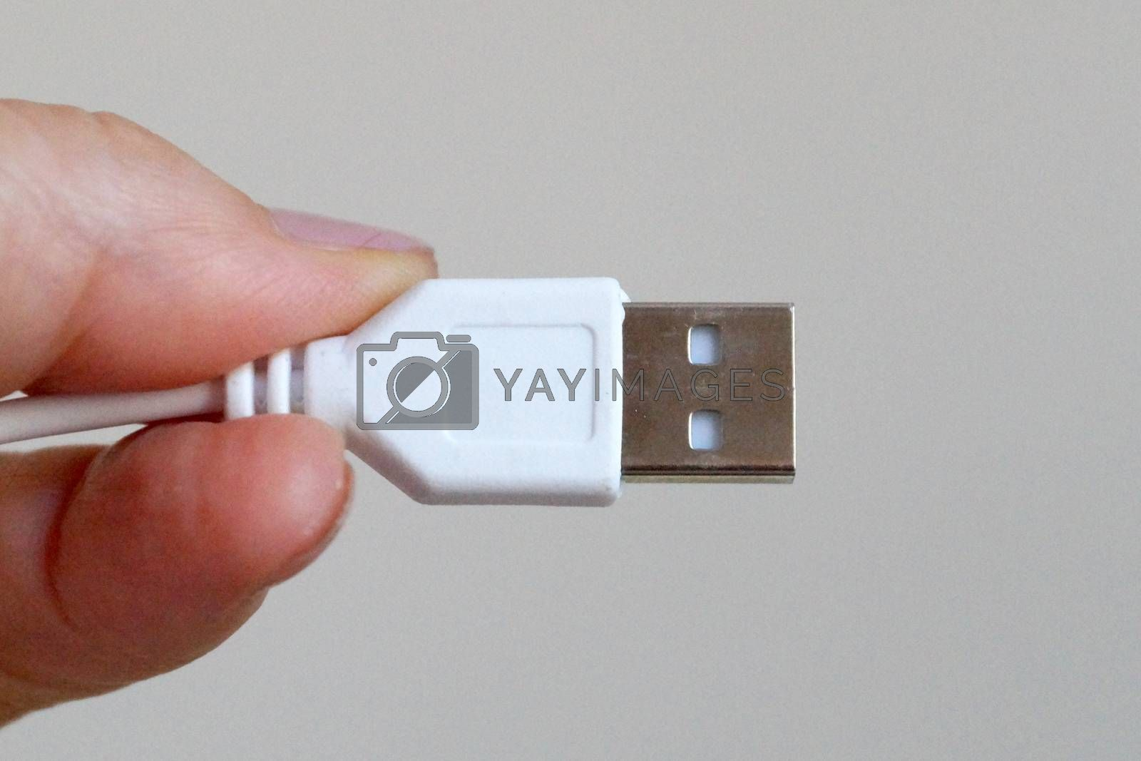 white usb cable in hand close-up