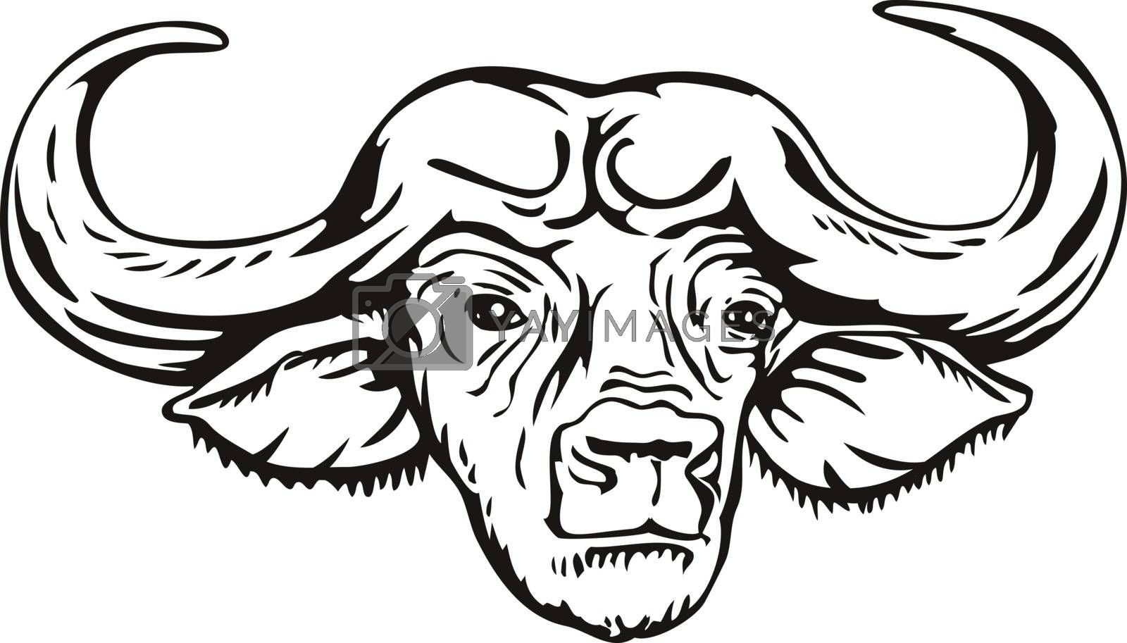 Retro woodcut style illustration head of an African buffalo or Cape buffalo Syncerus caffer, a large sub-Saharan African bovine, viewed from front on isolated background done in black and white.