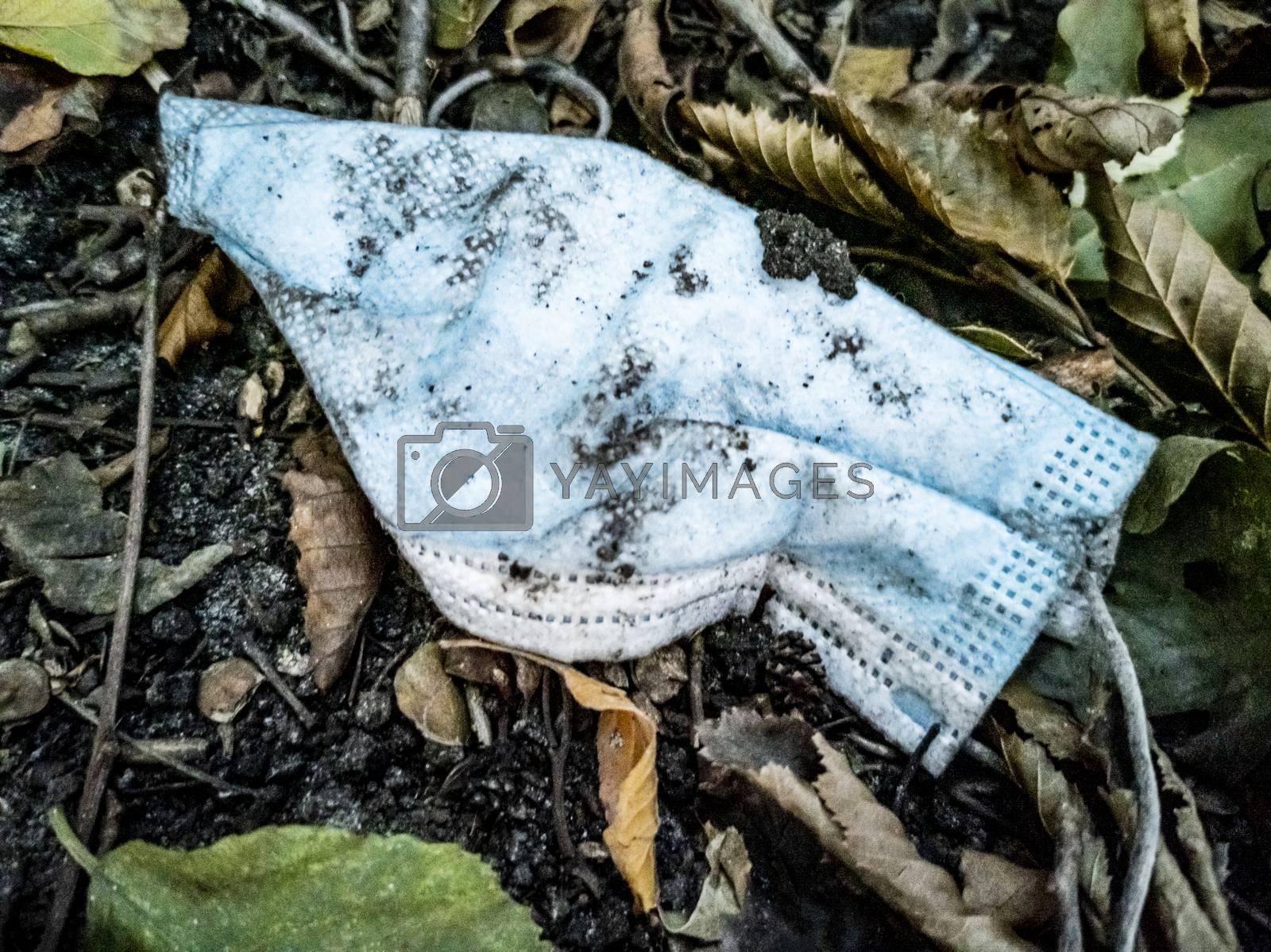 Dirty surgical masks in nature. Corona virus pollution. Leherheide, Bremerhaven.