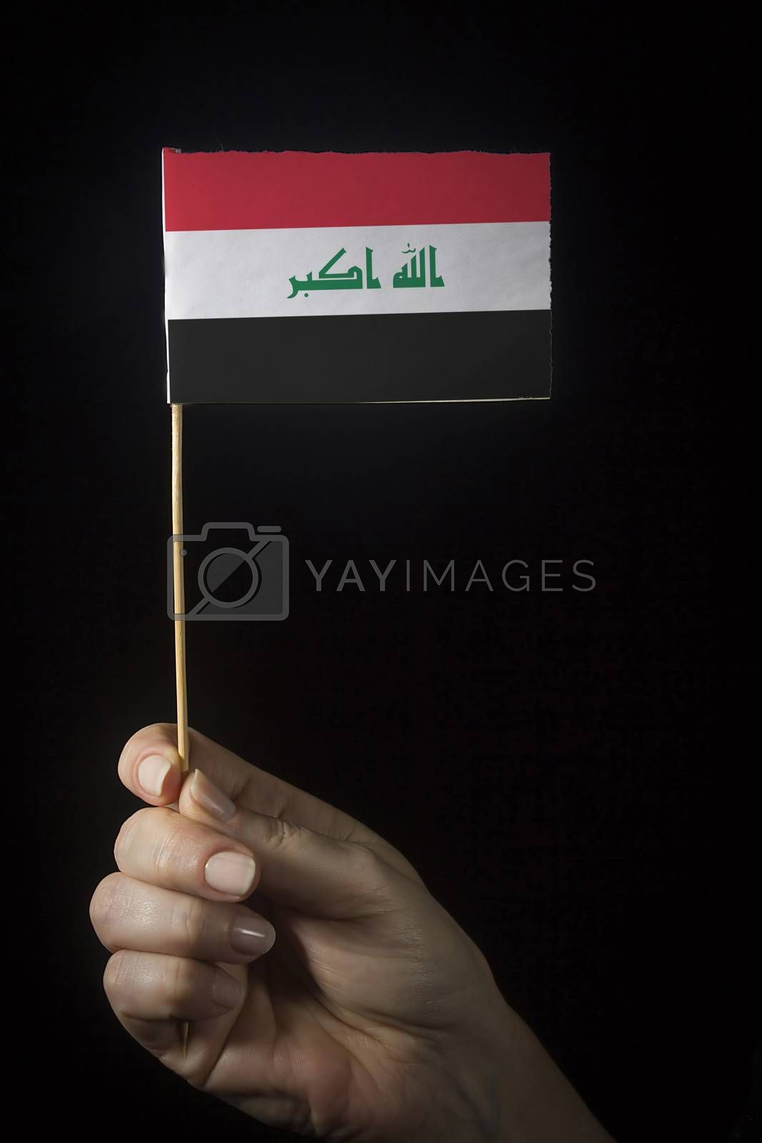 Hand with small flag of state of Iraq