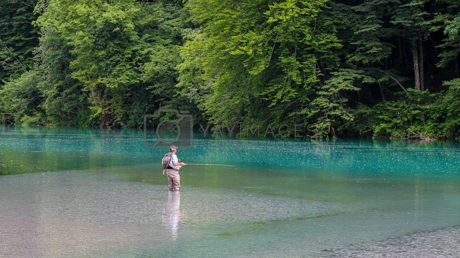 Tolmin, Slovenia - July 18th 2018: A man fly fishing for marble trout on the Soca River at the Tolminka confluence, near Tolmin, Slovenia