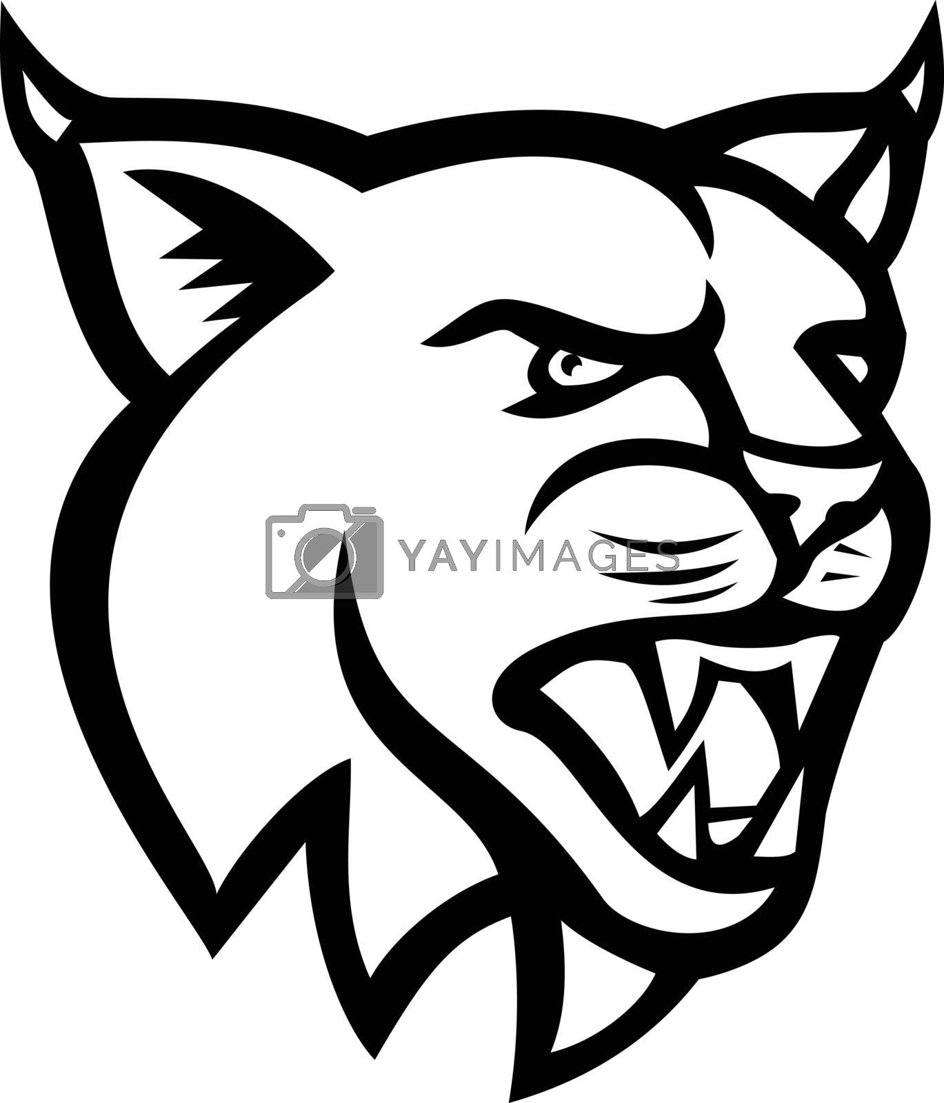 Black and white illustration of head of a lynx, Canada lynx, Eurasian lynx or Bobcat,a medium-sized wild cat   viewed from side on isolated background in retro style.