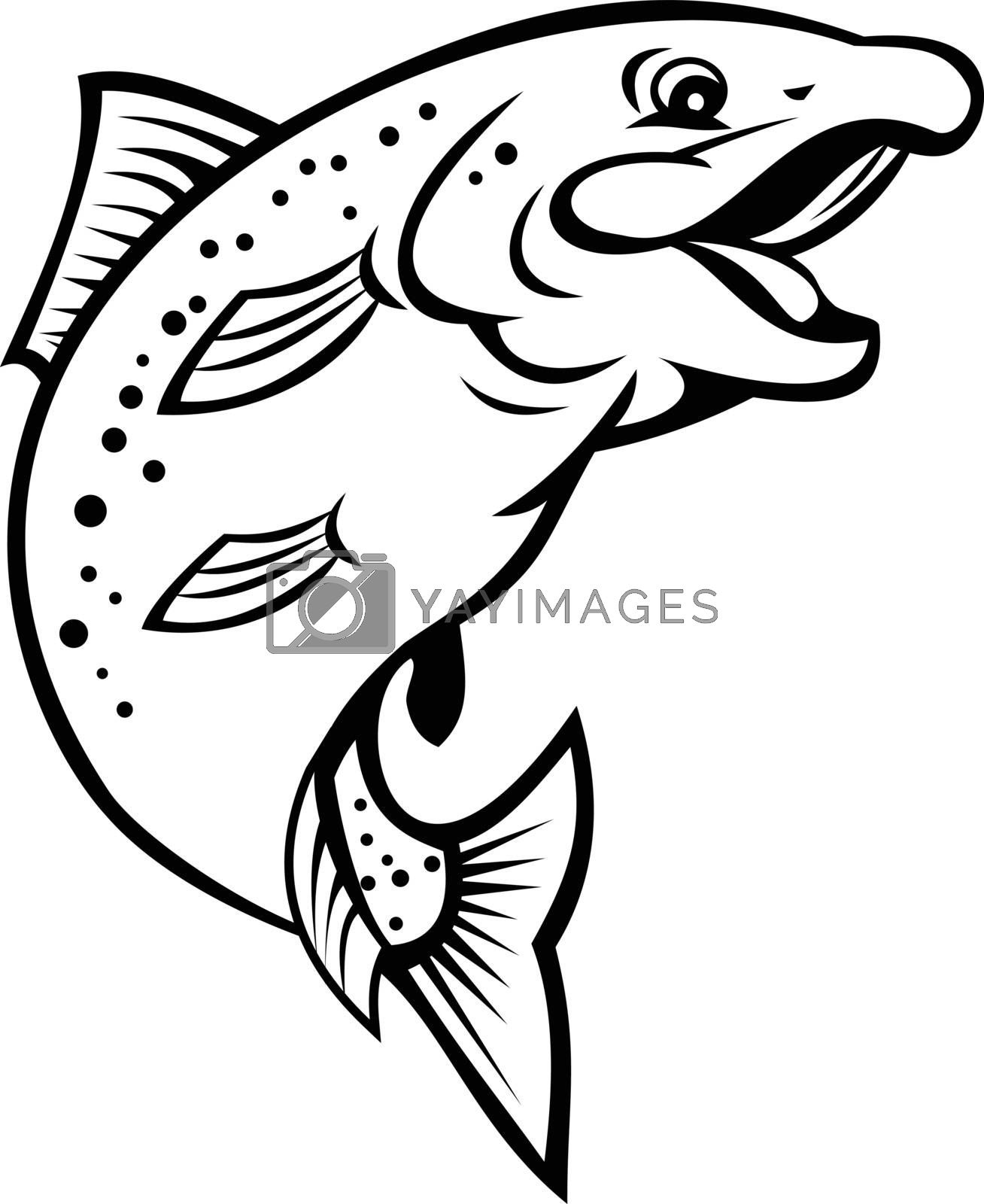 Cartoon style illustration of a happy rainbow trout or salmon fish jumping up on isolated white background in black and white.
