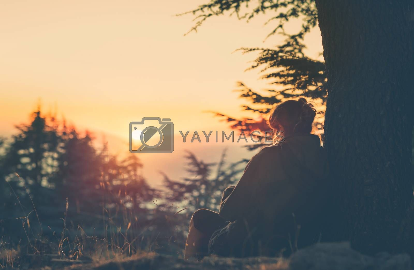 Silhouette of a Nice Woman Sitting under the Tree and Watching a Beautiful Orange Sunset. Female Relaxation in the Nature.