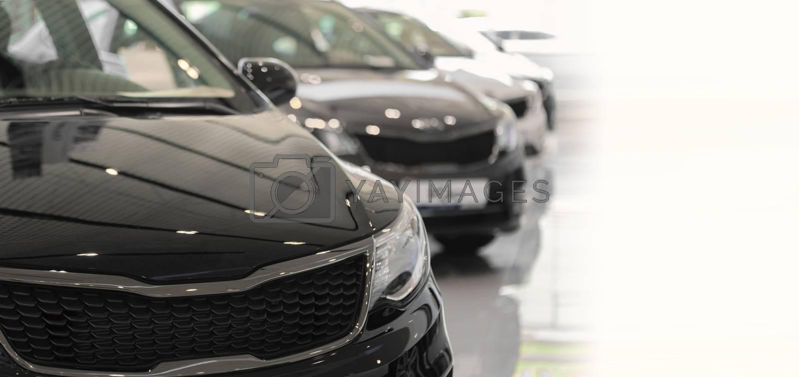 Car sales. Automobile in sales salon. Market place