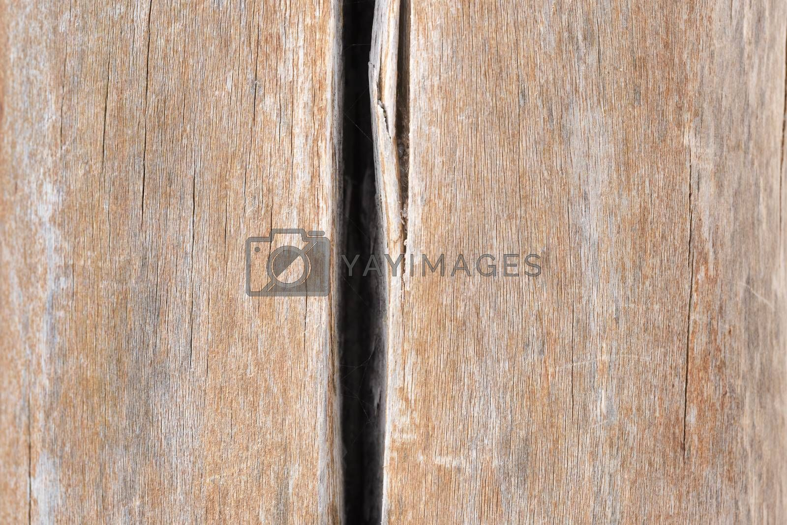 Background of old boards. Wood texture with natural patterns