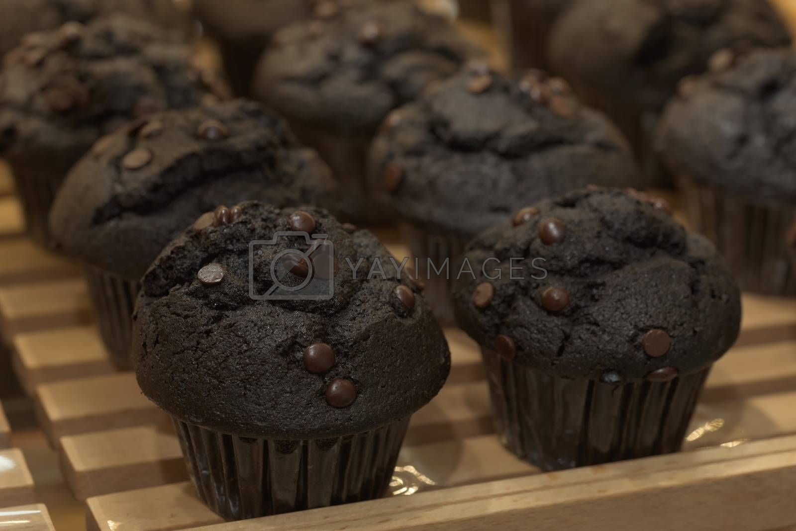 Chocolate cupcakes. Black cupcakes on a pallet