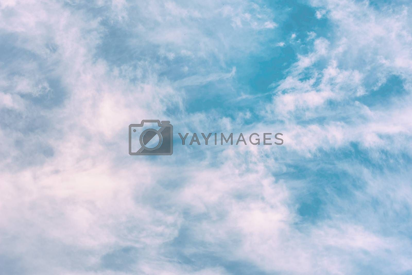 Cloud background. White clouds in the sky. Blue sky.