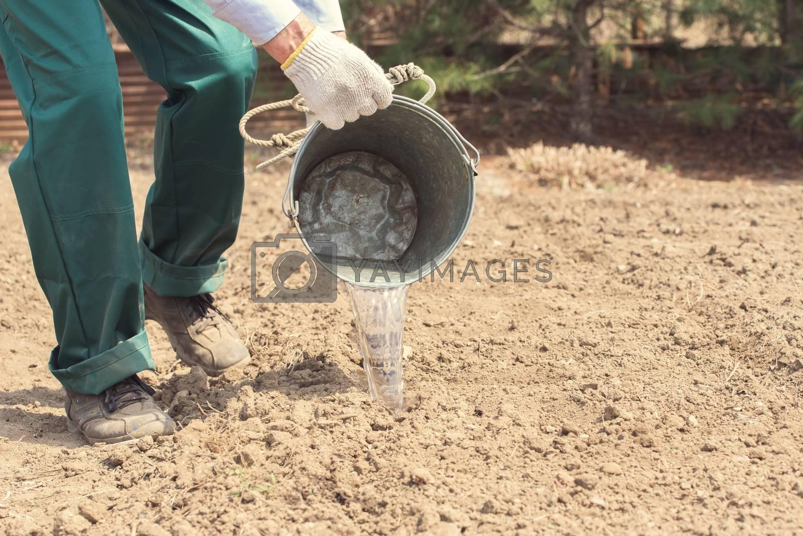 Farmer or employee working in the field. Farmer watered the garden