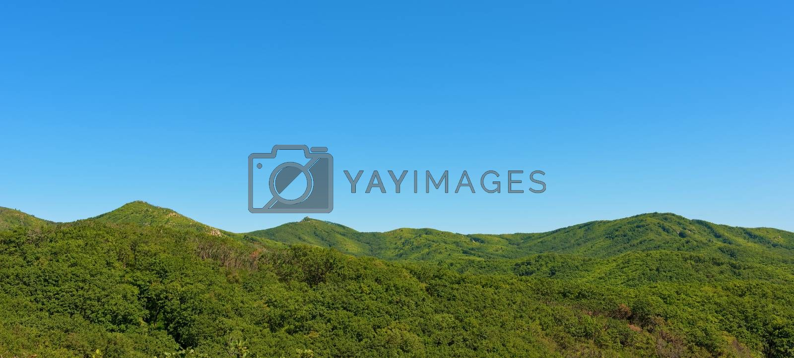 Summer mountains and blue sky landscape. Green mountains