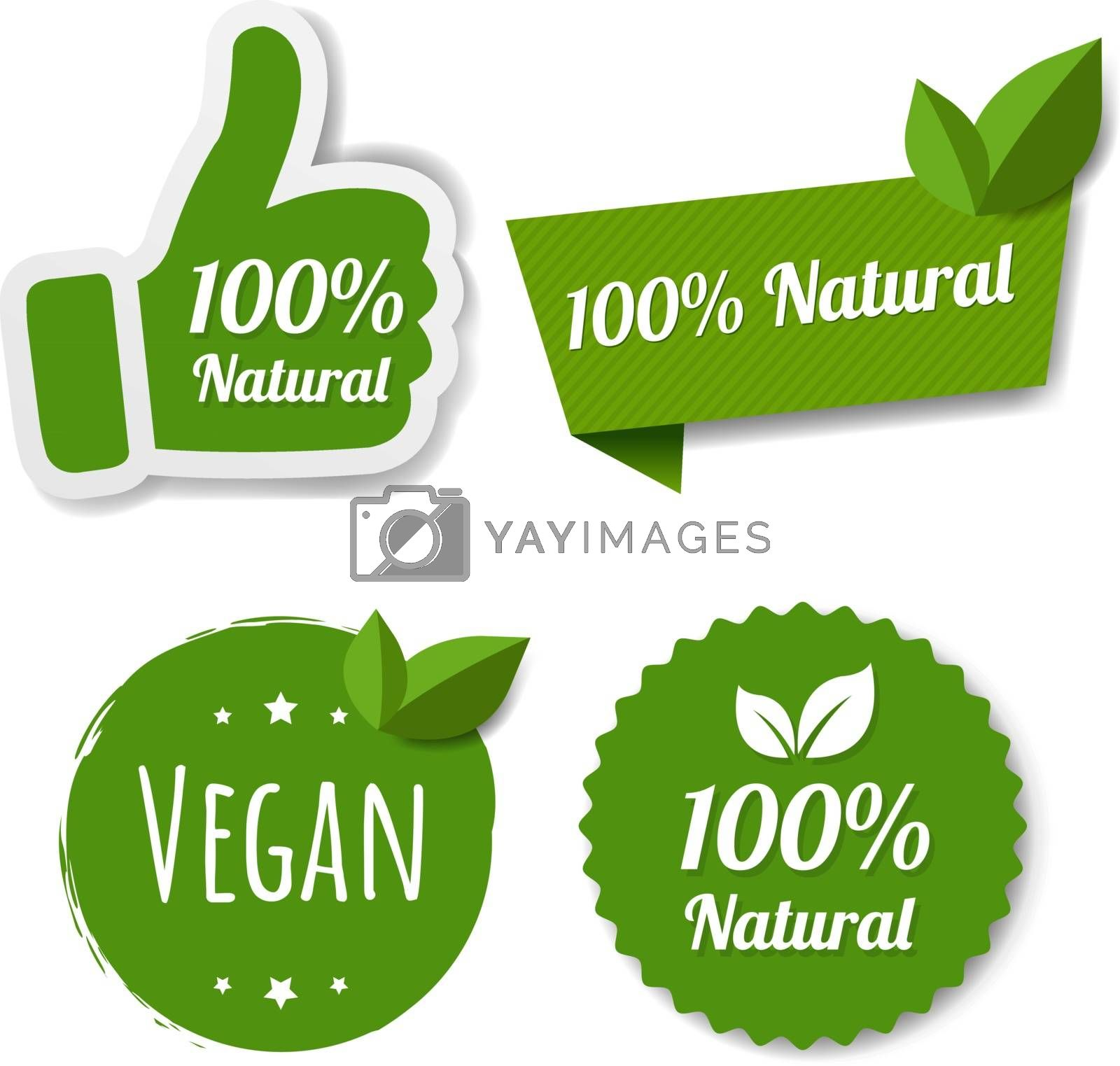 Natural Green Labels Set With Leaves With Gradient Mesh, Vector Illustration