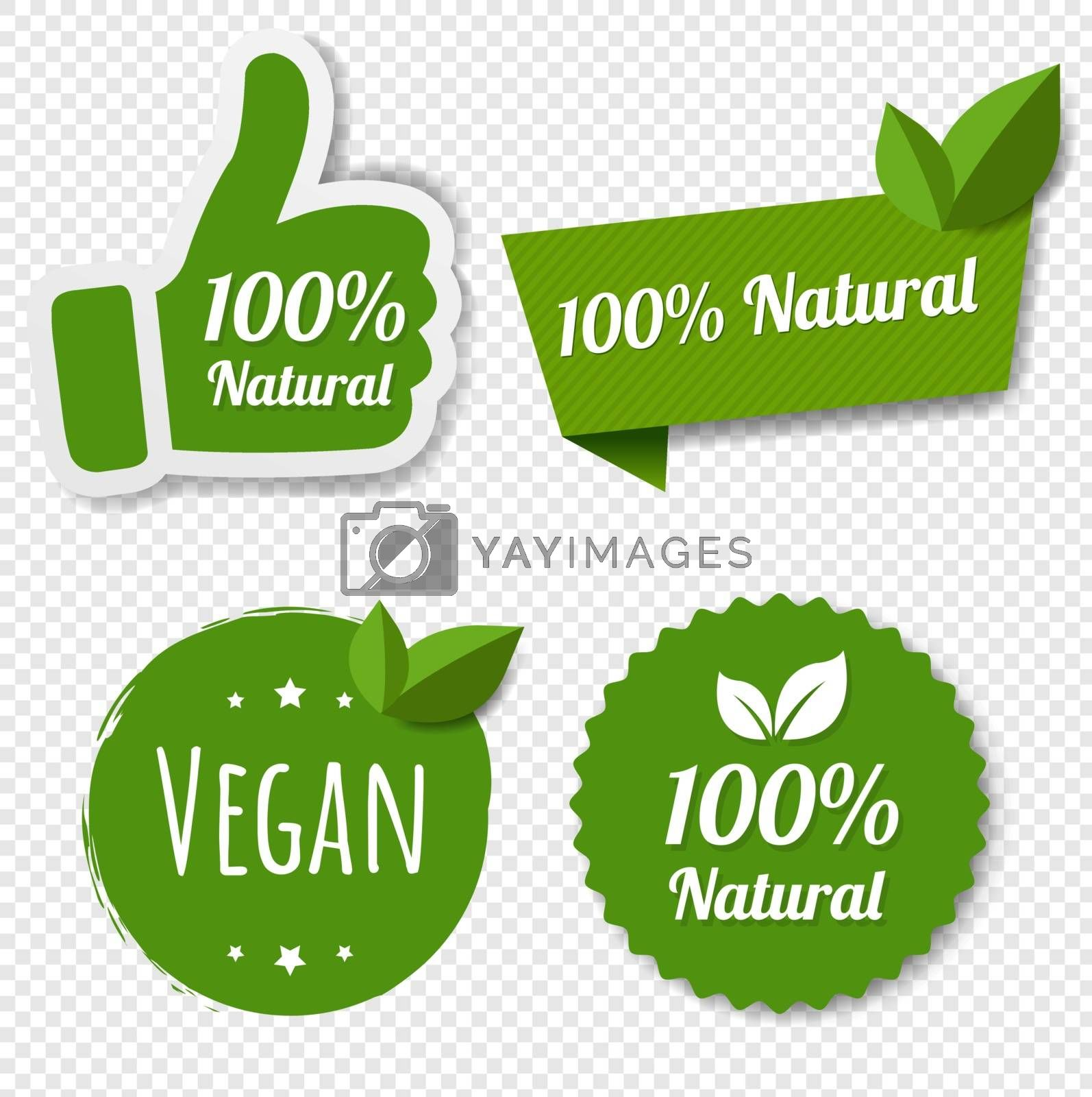 Natural Green Labels Set With Leaves Transparent Background With Gradient Mesh, Vector Illustration