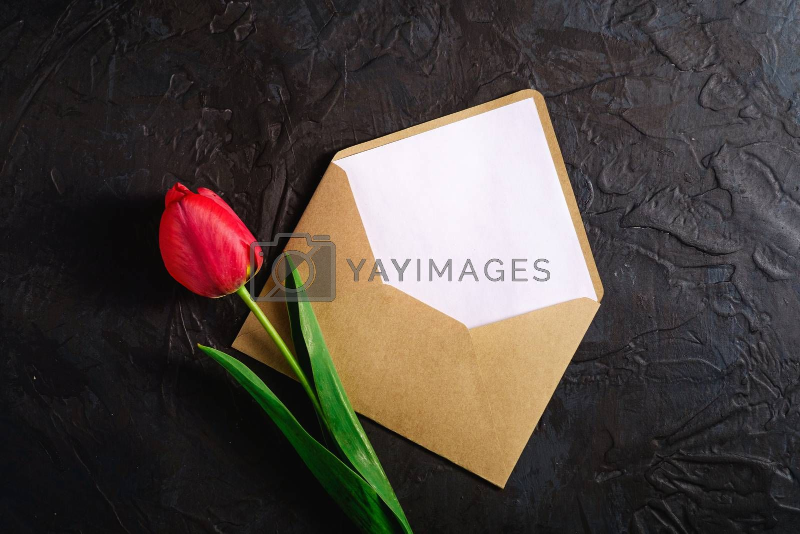 Single red tulip flowers with envelope card on textured black background, top view copy space