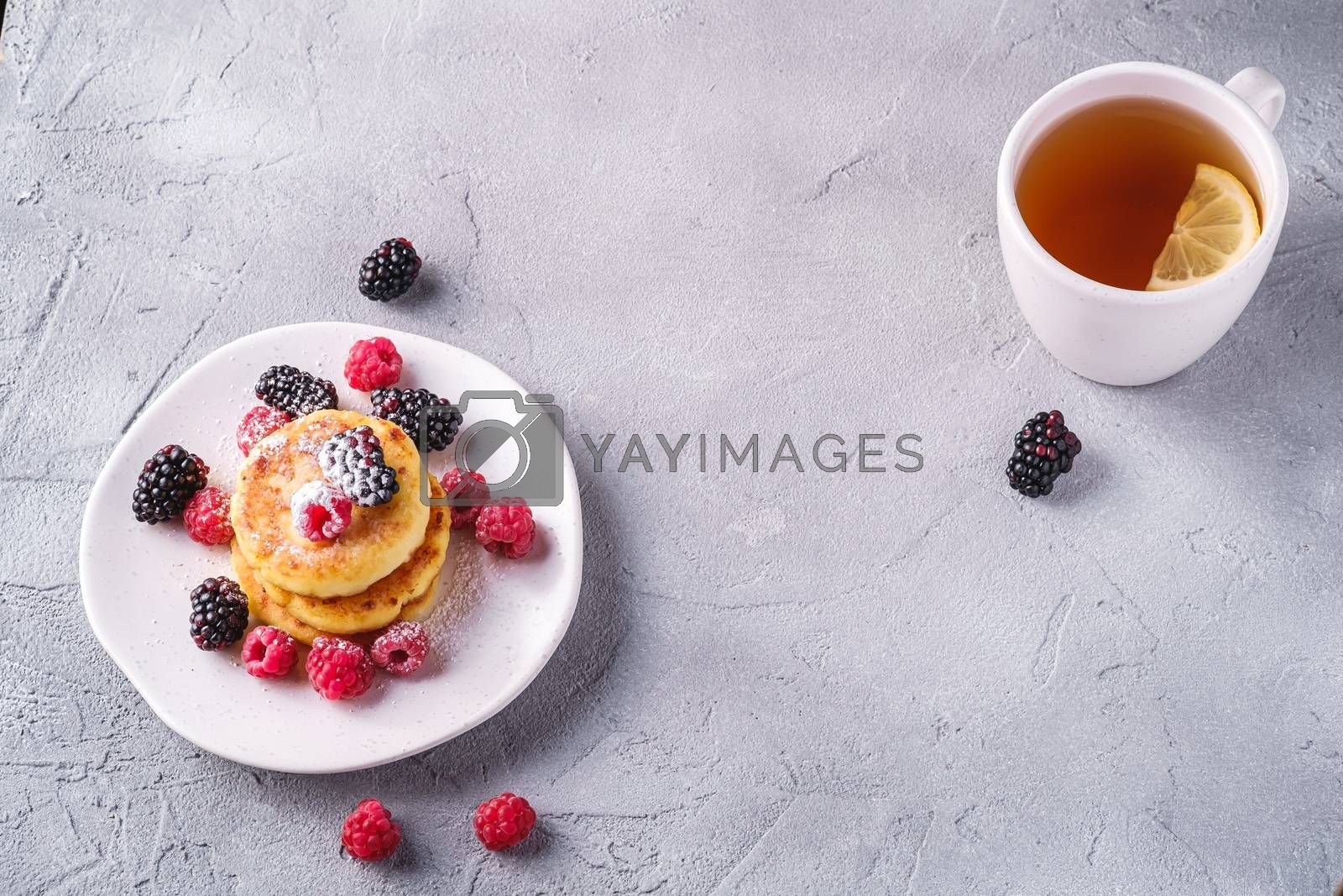 Cottage cheese pancakes and powdered sugar, curd fritters dessert with raspberry and blackberry berries in plate near to hot tea cup with lemon slice on stone concrete background, angle view copy space