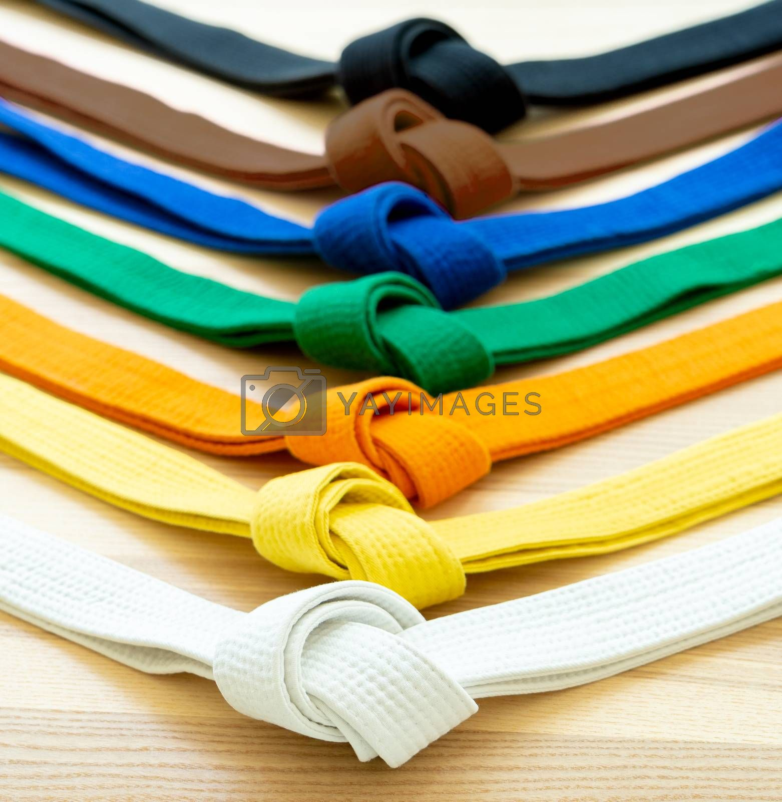 Royalty free image of Martial arts colored belts on a wood background. by maramade